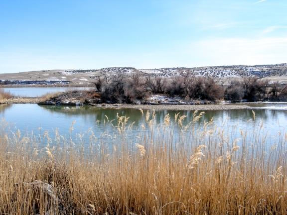 Gunnison River, March 2012